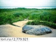 Плещеев камень (2011 год). Редакционное фото, фотограф Фрибус Екатерина / Фотобанк Лори