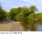 Купить «Летний пейзаж на берегу маленькой реки», фото № 2786413, снято 26 июня 2010 г. (c) Олег Рубик / Фотобанк Лори