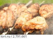 Шашлык. Стоковое фото, фотограф Евгения Фурсова / Фотобанк Лори