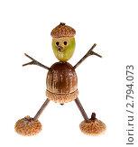 Купить «Радостный человечек сделанный из желудей и палочек», фото № 2794073, снято 12 сентября 2011 г. (c) Ирина Кожемякина / Фотобанк Лори