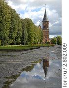 После дождя (2011 год). Редакционное фото, фотограф Svet / Фотобанк Лори