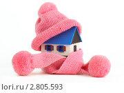 Купить «Теплый дом», фото № 2805593, снято 17 июля 2018 г. (c) Marina Appel / Фотобанк Лори
