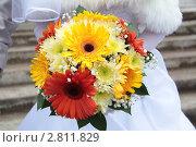 Купить «Букет невесты с герберами», фото № 2811829, снято 12 августа 2011 г. (c) Пересыпкина Елена Игоревна / Фотобанк Лори