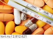 Купить «Градусник, таблетки и капсулы», фото № 2812621, снято 5 мая 2009 г. (c) Иван Михайлов / Фотобанк Лори