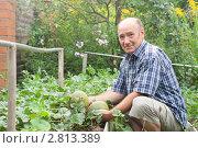 Пенсионер держит в руках дыни. Стоковое фото, фотограф Донцов Евгений Викторович / Фотобанк Лори