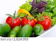 Свежие овощи на тарелке. Стоковое фото, фотограф Elnur / Фотобанк Лори