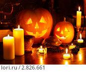 Купить «Натюрморт на тему Хэллоуина», фото № 2826661, снято 26 сентября 2011 г. (c) Gennadiy Poznyakov / Фотобанк Лори