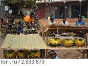 Купить «Уганда. Дорожные зарисовки», эксклюзивное фото № 2833873, снято 6 сентября 2009 г. (c) Знаменский Олег / Фотобанк Лори