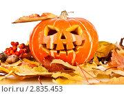 Купить «Хэллоуин», фото № 2835453, снято 30 сентября 2011 г. (c) Андрей Армягов / Фотобанк Лори