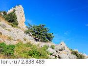 Южная часть Крымского полуострова, горный пейзаж . Украина. (2011 год). Стоковое фото, фотограф Vitas / Фотобанк Лори