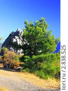 Купить «Южная часть Крымского полуострова, горный пейзаж . Украина.», фото № 2838525, снято 12 сентября 2011 г. (c) Vitas / Фотобанк Лори
