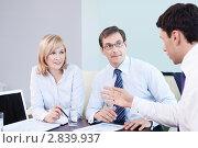 Купить «Бизнес-команда в офисе», фото № 2839937, снято 1 июня 2011 г. (c) Raev Denis / Фотобанк Лори