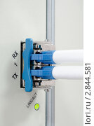 Купить «Оптические кабели подключенные к телекоммуникационному оборудованию», фото № 2844581, снято 19 июля 2019 г. (c) Антон Железняков / Фотобанк Лори