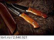 Ножи охотничьи. Стоковое фото, фотограф Тагильцева Наталия / Фотобанк Лори
