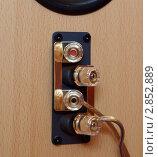 Купить «Клеммы для подключения кабеля на акустической системе», фото № 2852889, снято 8 октября 2011 г. (c) Цибаев Алексей / Фотобанк Лори