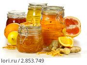 Купить «Варенье из апельсиновых корочек с имбирем и засахаренные дольки цитрусовых в стеклянных банках», эксклюзивное фото № 2853749, снято 3 марта 2011 г. (c) Лидия Рыженко / Фотобанк Лори