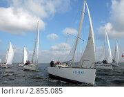 Купить «Яхтенная регата в Калининградском заливе», эксклюзивное фото № 2855085, снято 1 октября 2011 г. (c) Svet / Фотобанк Лори