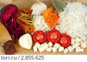 Купить «Свежие нарезанные овощи для борща», фото № 2855625, снято 8 октября 2011 г. (c) Сергей Колесников / Фотобанк Лори