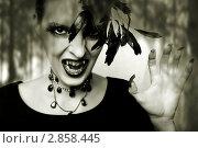 Купить «Портрет девушки с готическим макияжем для хэллоуина, в образе ночного вампира или зомби», фото № 2858445, снято 20 августа 2011 г. (c) katalinks / Фотобанк Лори