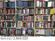 Купить «Библиотека, полки с книгами», фото № 2864029, снято 20 февраля 2018 г. (c) Losevsky Pavel / Фотобанк Лори