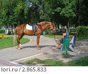 Купить «Прогулка с лошадкой в парке. Город Реутов, Московская область», эксклюзивное фото № 2865833, снято 30 августа 2011 г. (c) lana1501 / Фотобанк Лори