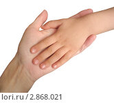 Купить «Рука ребенка в руке матери на белом фоне», фото № 2868021, снято 17 мая 2011 г. (c) Светлана Ильева (Иванова) / Фотобанк Лори