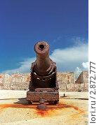 Старинная пушка. Стоковое фото, фотограф Leksele / Фотобанк Лори