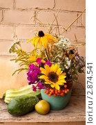 Купить «Натюрморт с цветами и овощами», фото № 2874541, снято 14 августа 2011 г. (c) Ольга Аристова / Фотобанк Лори