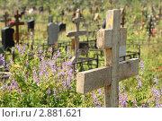 Купить «Старый деревянный крест на кладбище», фото № 2881621, снято 19 июня 2010 г. (c) Losevsky Pavel / Фотобанк Лори