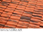Купить «Черепичная крыша», фото № 2882329, снято 31 июля 2010 г. (c) Losevsky Pavel / Фотобанк Лори