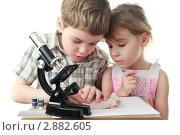 Купить «Любопытные дети с микроскопом», фото № 2882605, снято 17 октября 2019 г. (c) Losevsky Pavel / Фотобанк Лори