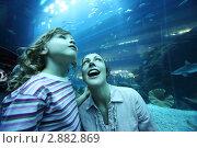 Мама с дочкой в океанариуме. Стоковое фото, фотограф Losevsky Pavel / Фотобанк Лори