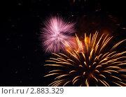 Купить «Пиротехническое шоу. Яркие огни взрываются в ночном небе», фото № 2883329, снято 9 мая 2009 г. (c) Losevsky Pavel / Фотобанк Лори