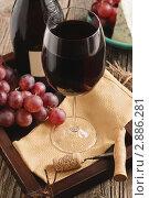 Купить «Натюрморт с красным вином, сыром и виноградом», фото № 2886281, снято 29 сентября 2011 г. (c) Светлана Зарецкая / Фотобанк Лори