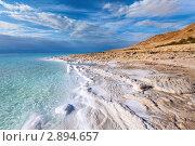 Береговая линия Мертвого моря с кристаллами соли на переднем плане (2011 год). Стоковое фото, фотограф Николай Винокуров / Фотобанк Лори