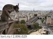 Купить «Монстр Нотр-Дама на фоне Парижа», фото № 2896029, снято 10 октября 2011 г. (c) Яна Королёва / Фотобанк Лори