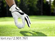 Купить «Гольф», фото № 2901761, снято 5 сентября 2011 г. (c) Raev Denis / Фотобанк Лори