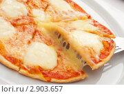 Купить «Пицца», фото № 2903657, снято 8 июля 2011 г. (c) Лямзин Дмитрий / Фотобанк Лори