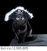 Купить «Черная кошка в шляпе пирата  на темном фоне», фото № 2905805, снято 18 октября 2011 г. (c) Ирина Кожемякина / Фотобанк Лори