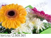 Букет цветов. Стоковое фото, фотограф Елена Блохина / Фотобанк Лори