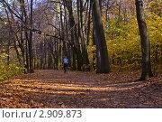Купить «Пожилой велосипедист в осеннем парке усадьбы Кузьминки», фото № 2909873, снято 9 октября 2005 г. (c) Родион Власов / Фотобанк Лори