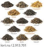 Купить «Коллекция черного чая», фото № 2913701, снято 17 мая 2011 г. (c) Анна Кучерова / Фотобанк Лори