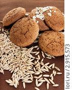 Купить «Овсяное печенье и овес», фото № 2915573, снято 17 сентября 2011 г. (c) Morgenstjerne / Фотобанк Лори