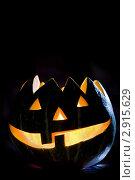 Купить «Тыква на Хэллоуин», фото № 2915629, снято 29 октября 2011 г. (c) Ольга Денисова / Фотобанк Лори