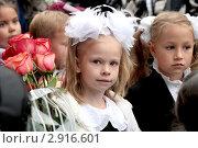 Купить «Школьница», фото № 2916601, снято 1 сентября 2011 г. (c) Мишурова Виктория / Фотобанк Лори