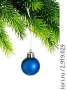 Ёлочное украшение, синий шарик висит на зелёной ветке, белый фон. Стоковое фото, фотограф Elnur / Фотобанк Лори