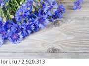 Синие васильки на деревянном столе, фото № 2920313, снято 4 июля 2011 г. (c) Воронин Владимир Сергеевич / Фотобанк Лори