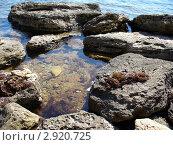 Крупные серо-коричневые камни на берегу моря в прозрачной воде, фото № 2920725, снято 26 июля 2006 г. (c) Ершова Дора Владимировна / Фотобанк Лори