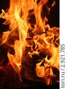 Купить «Пылающий огонь», фото № 2921785, снято 12 мая 2007 г. (c) Александр Лесик / Фотобанк Лори