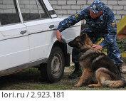 Купить «Кинолог со служебной собакой обследуют автомобиль на взрывчатые вещества», эксклюзивное фото № 2923181, снято 27 мая 2011 г. (c) Free Wind / Фотобанк Лори